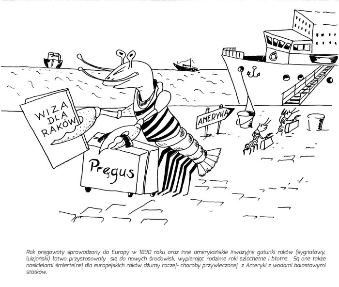 pomorskie parki rysunek7