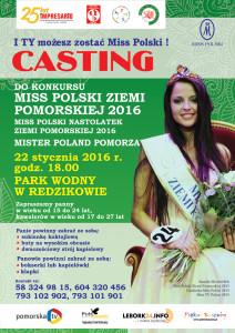 CASTIN_REDZIKOWO_plakat fb